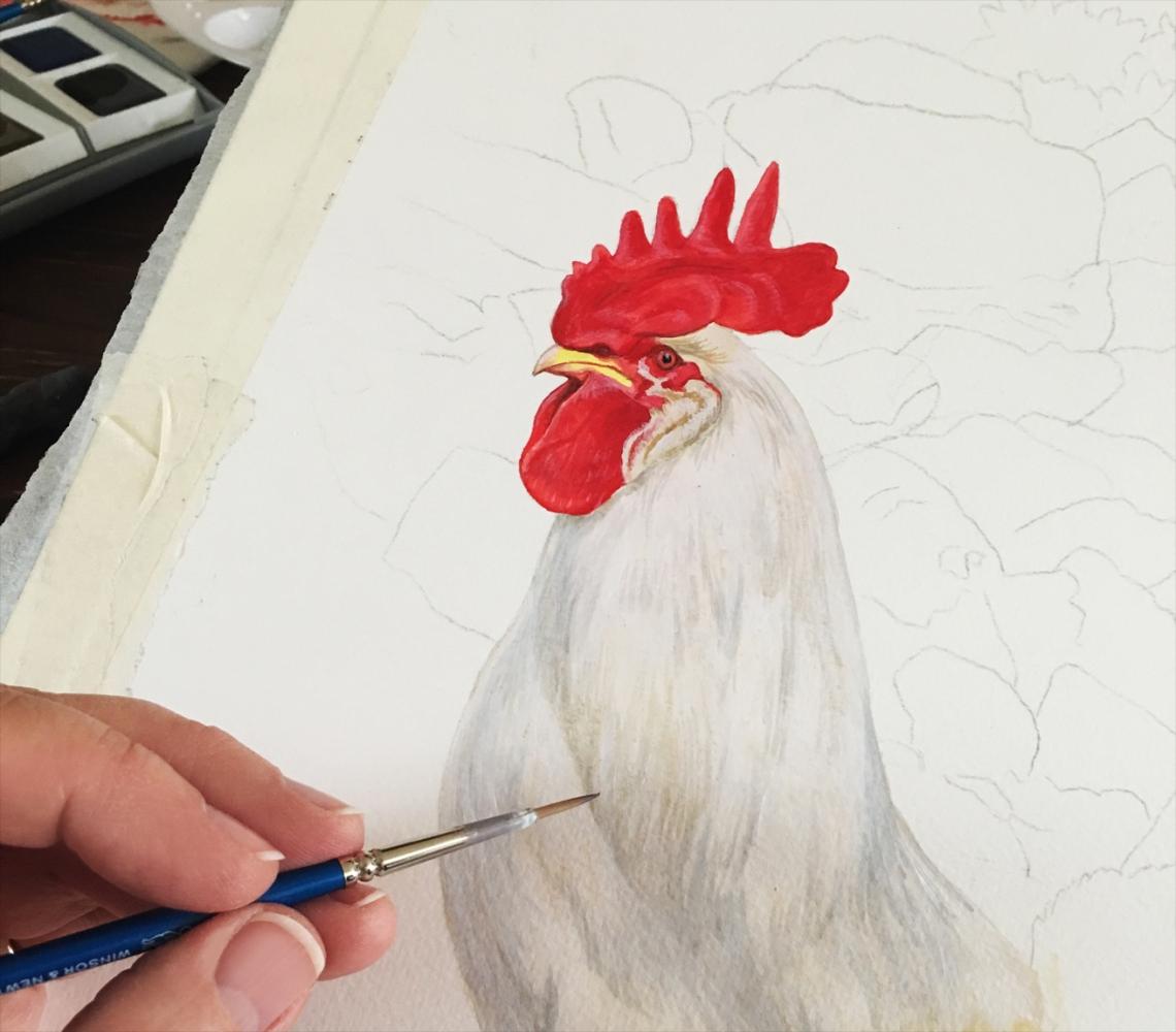 Rooster in Progress2