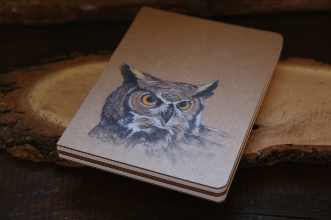 owl journal 2